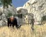 Чей лошадка?